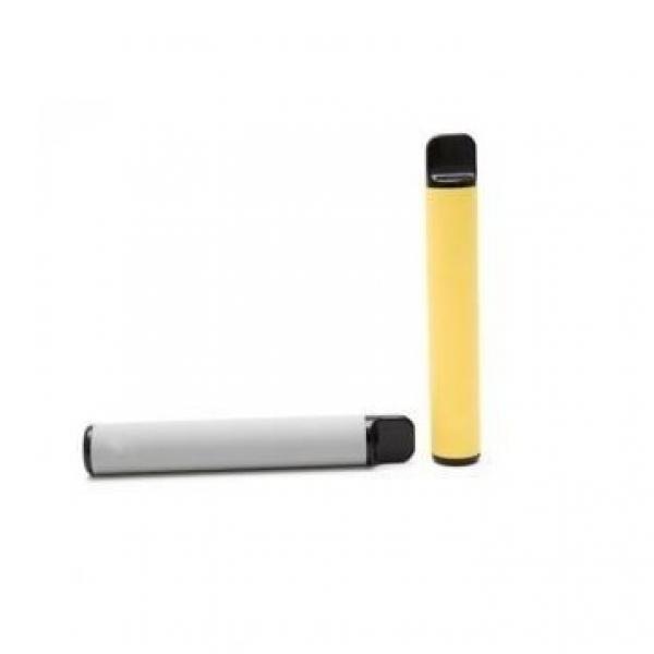 TarGard Original Disposable Cigarette Filters - Clear - Bulk Bag of 100 Filters