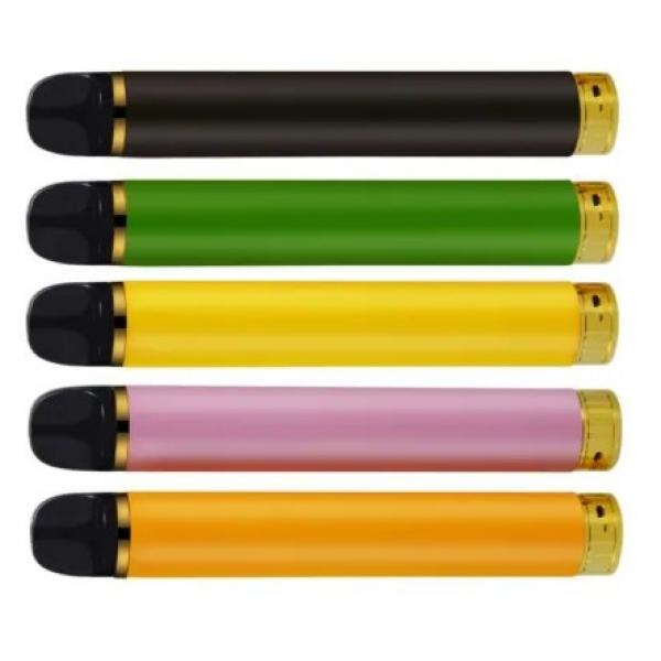 WORLDS BUBBLE GUM CIGARETTES U choose Amount BULK Gum they blow smoke FREE SHIP