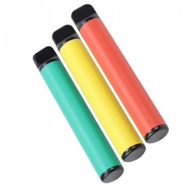50pcs Ice Pop Maker Pouches Seal Freezer Bags Disposable Popsicles Bags