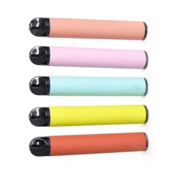 DIY Ice Cream Bags Disposable Zip Lock Pop Pouches Seal Freezer Popsicles Pocket