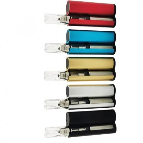 Wholesale Disposable Flint Lighters Pack of 100 W/ Free Display Case Kitchen BBQ