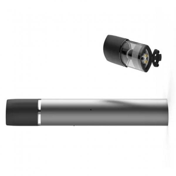 Twsbi Diamond Mini The Silver Pen Fountain Pen Clear Demonstrator
